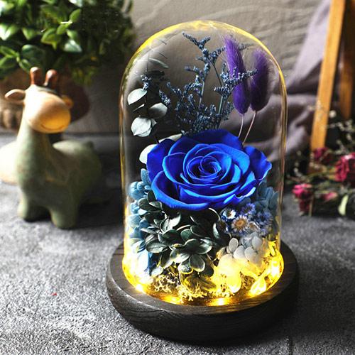 蓝色妖姬玫瑰花束 全国送花